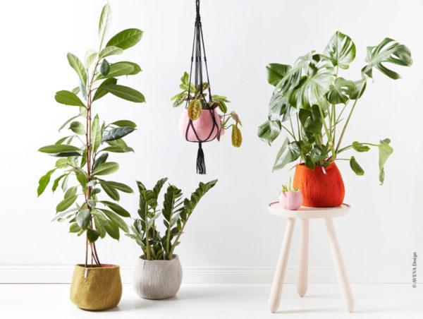 Miljo_plants_aveva