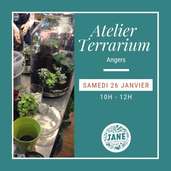atelier terrarium angers 26/01/19
