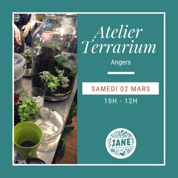 atelier terrarium angers 02/03/19