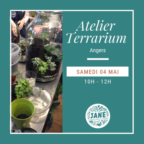 atelier terrarium angers 04/05/19