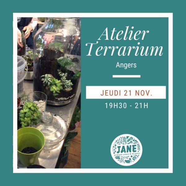 Atelier Terrarium ANGERS novembre