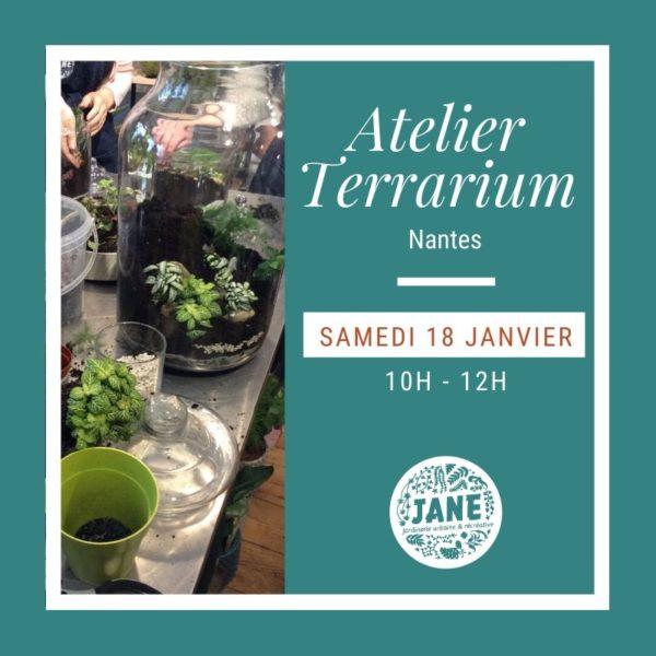 atelier terrarium JANE Nantes janvier