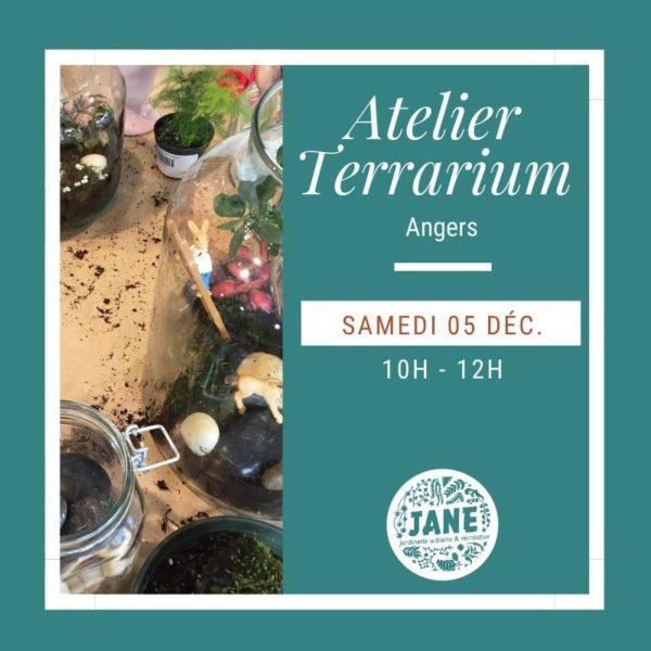 Atelier terrarium Angers décembre