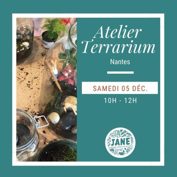 atelier terrarium décembre Nantes